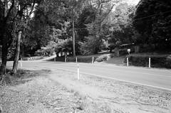 Mount Dandenong Tourist Road..! (Matthew Paul Argall) Tags: canonsnappy20 fixedfocus focusfree 35mmfilm blackandwhite blackandwhitefilm kentmere100 100isofilm road street mountdandenongtouristroad