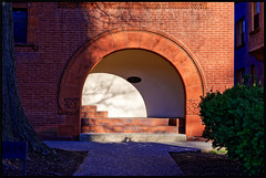 2019/047: The Arches (Rex Block) Tags: 2019047arched nikon d750 dslr 50mm f18g washington dc building bricks arch shadow entry project365 365the2019edition 3652019 day47365 16feb19