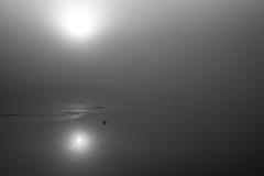 Silent river (shanahands2) Tags: river fog sunrise mooring blackwhite monochrome nikon d750 fx