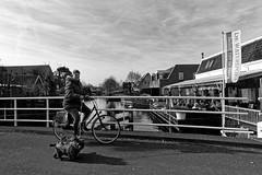 Walking Two Dogs On A Bike, Experience It In Heeg! (Alfred Grupstra) Tags: blackandwhite people outdoors urbanscene monochrome women citylife city men females buildingexterior lifestyles transportation dog bridge water bike woman