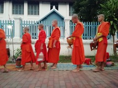 Luang Prabang (denismartin) Tags: denismartin laos luangprabang monk takbat bouddhism religion worship streetphotography people orange sia