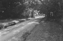 Illoura Road (Matthew Paul Argall) Tags: beirettevsn 35mmfilm kentmere100 100isofilm blackandwhite blackandwhitefilm road street illouraroad