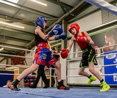 ABA-1910356.jpg (bridgebuilder) Tags: west aba barton boxing club eccles sport north amateur bps sig counties