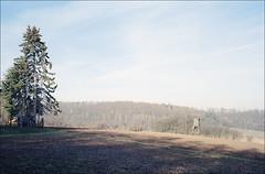 da oder da sitze (fluffisch) Tags: fluffisch oberramstadt leicam6 rangefinder messucher summiluxm35f14 preasph summilux 35mm analog film kodak portra160