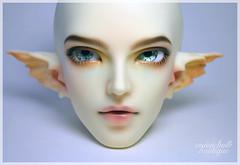 Fairyland Feeple65 Roke Faceup (onionbulb) Tags: bjd faceup fairyland feeple65 feeple 65 roke