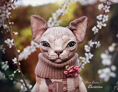 In the blossoms 🐈 (pure_embers) Tags: pure embers laura uk pureembers photography cat kitty sculpture anthropomorphic portrait cute sphynx textile sphinx ekaterina blossom