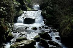 East Lyn River, Watersmeet (Lady Tottington) Tags: watersmeet devon river eastlyn lynmouth