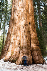 General Sherman - Giant Sequoia - the world's largest known tree by mass (vambo25) Tags: california sequoia generalsherman largest tree grove nationalpark nps
