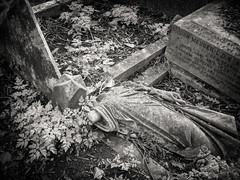 20190302-0266-Edit (www.cjo.info) Tags: 1840 1840s 19thcentury allsaintscemeterynunhead bw england europe europeanunion london m43 magnificent7 magnificentseven magnificentsevengardencemeteries microfourthirds nikcollection nunhead olympus olympuspenfgzuikoautow20mmf35 olympuspenf penfmount silverefexpro silverefexpro2 southwark unitedkingdom westerneurope art blackwhite blackandwhite blur bokeh broken carving cemetery decay digital fallen flora focusblur foliage gravegraveyard leaf manualfocus monochrome overgrown people plant sculpture shallowdepthoffield statue stone stonework woman wooded