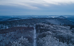 Pfälzerwald (Michal Jeska) Tags: pfälzerwald forest winter snow landscape mountains hills outdoor outside tree white nature sonya7 ilce7 mir1 mir 1 m42 lens russian soviet carl zeiss flektogon 37mm 28