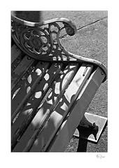 Shadow Series 004 (radspix) Tags: yashica 230af kyocera af f3545 ilford fp4 plus pmk pyro 2885
