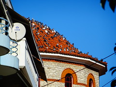 Τρικαλα DSC07835 (omirou56) Tags: 43ratio sonydschx60v sky church birds architecture hellas ουρανοσ περιστερια πουλια τρουλοσ εκκλησια αρχιτεκτονικη ελλαδα τρικαλα