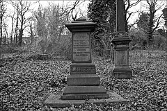 General Cemetery  Monochrome (brianarchie65) Tags: generalcemetery cemeteries headstones brokenheadstones graves grave hull geotagged brianarchie65 trees bushes ivy branches kingstonuponhull springbankwest cityofculture blackandwhite blackandwhitephotos blackandwhitephoto blackandwhitephotography blackwhite123 blackwhiterealms unlimitedphotos ngc flickrunofficial flickr flickruk flickrcentral flickrinternational ukflickr canoneos600d