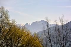 Le Dolomiti dai pressi di Bolzano (giorgiorodano46) Tags: marzo2019 march 2019 giorgiorodano italy altoadige sudtirolo dolomiti vaiolett catinaccio rosengarten bolzano mountain alpi alpes alps alpen landscape