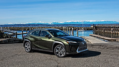Lexus UX250h 2019 (campmusa) Tags: 2019 autoreviews crossovers driven fwd hatchback lexus tomvoelk ux hybrid continuouslyvariableautomatic allwheeldrive 5passenger 4doorhatchback lexusux250h