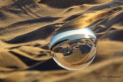 Lensball sunset (Florent Péraudeau) Tags: lensball sunset canon eos 1 d mark iv 24 105 l aurora 19 2019 skylum eo 1d k 4 nouvelle aquitaine charente maritime royan verdon sur mer crépuscule