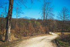 KRIS8306 (Chris.Heart) Tags: forest nature hungary pilis erdő természet túra hiking