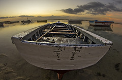 Wooden Fishing Boat (Malaquin Eric ........ thanks for your visits & co) Tags: fishingboat indianocean ilemaurice mauritius ericmalaquin fisheye fishingboats sea seaside lagoon seascape boat barque clouds crepuscule twilight landscape lagon light lowtide reflection atmosphere pentax water sunset sundown sky