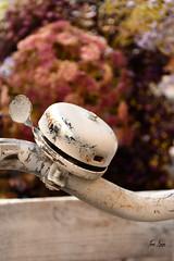 Detalles de Sitges (Jone Arcos) Tags: bicicletas mobiliariourbano enfoqueselectivo flores desenfoque bokeh sitges catalunya