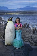 Penguins And Mermaids (evaxebra) Tags: long beach aquarium pacific aquariumofthepacific california dawn january 2019 luna mermaid ariel costume animal sea penguin