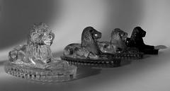 Antique Glass Lions  #FlickrFriday #Monochrome (phayes88) Tags: flickrfriday monochrome glass lions antique