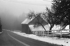 Roadside Barn (anthonypond) Tags: 50mm bw hp5 ilfordhp5olympusom2 om2 oregon portland rodinal150 analog film