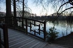 parc (revoli photo) Tags: lyon slack slackline bateau soane rhone parc song city sun bird