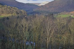 Llantysylio 100319_DSC3275 (Leslie Platt) Tags: exposureadjusted straightened denbighshire riverdee llantysylio