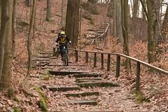 Steps and Gaps (all martn) Tags: sachsenschweiz sächsischeschweiz elbsandsteingebirge mtb all mountain bike riding