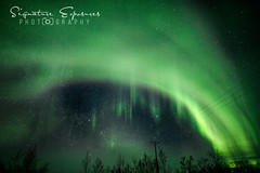 190306165617-5112-Edit (shannbil (Signature Exposures)) Tags: northernlights aurora auroraborealis finland norway winter shannonbileski signatureexposures shannbil landscape photography