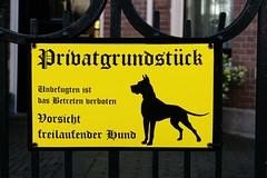 ich heiße Dich herzlich willkommen (Roel Wijnants) Tags: ccbync roelwijnants roelwijnantsfotografie roel1943 herzlichwillkommen pasopdehond tekst duist letters font frakturletterype fraktur gotische antiqua waarschuwing hond