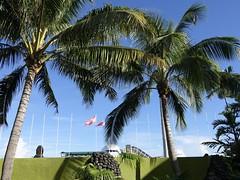 Polynésie 2019 - Tahiti (Valerie Hukalo) Tags: polynésie tahiti archipeldelasociété valériehukalo hukalo polynésiefrançaise frenchpolynesia océanpacifique pacificocean océanie oceania drapeau flag airport aéroport af boing 777 airfrance faaa