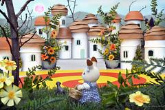 Sylvanian Families - Munchkinland (Sylvanako) Tags: wizard oz wizardofoz munchkins munchkinlan sylvanian families calico critters sylvanianfamilies dorothy toto diorama village fairytale miniature toy toys toyphotography