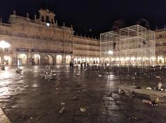 nochevieja 2018 plaza mayor portugueses (1)
