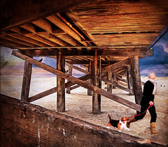 Winter At The Beach (jarr1520) Tags: outdoors winter beach textured composite sky clouds sand man dog running lifestyle pier
