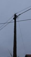 Ciel gris et thème de janvier: contreplongée (Marie-Hélène Cingal) Tags: france cagnotte paysdorthe 40 landes aquitaine nouvelleaquitaine