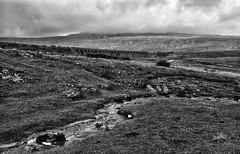 Ribblehead. (curly42) Tags: ribblehead viaduct northyorkshire battymossviaduct railway structure ribbleheadviaduct settlecarlisleline johnsydneycrossley countryside