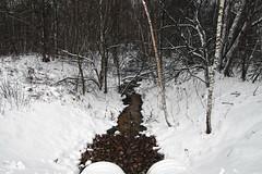 Kraav (Jaan Keinaste) Tags: pentax k3 pentaxk3 eesti estonia loodus nature kraav vesi water lumi snow mets forest talv winter ditch