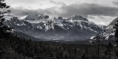 Bow Valley (ScottBennie) Tags: banffnationalpark landscape winter blackwhite nature hiking sundancecanyon outdoors canada scenic alberta scenery snow