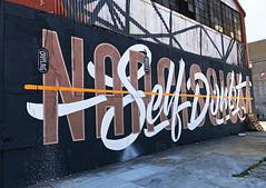 The Line Between Narcissim and Self Doubt by Never Satisfied (wiredforlego) Tags: graffiti mural streetart urbanart aerosolart publicart williamsburg brooklyn newyork nyc ny neversatisfied