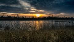 Hahnenmoor (andreasmally) Tags: hahnenmoor sunset moor nature natur germany deutschland bog wasser water himmel sky clouds wolken