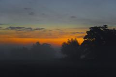 Sunrise over Eynsford in Kent, England  -  (Selected by SHUTTERSTOCK) (DESPITE STRAIGHT LINES) Tags: dawn firstlight eynsford eynsfordkent kent countryside sunriseovereynsford lullingstone lullingstonevillage eynsfordvillage river riverdarent day cloud landscape nikon d800 nikond800 nikon2470mm nikkor2470mm paulwilliams despitestraightlines flickr morning am sunrise thegoldenhour goldenhour sunrisephotography lowlightphotography outdoorphotography nature mothernature naturalbeauty beauty mistmisty mistymorning fog ethereal et star stars