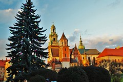 Christmas times (Eziah photography) Tags: castle wawel wawelcastle poland krakow tree christmas christmastree colors light sky day daylight winter cold architecture travel city citytrip pologne cracovie noel arbre hiver jour voyage ville chateau couleurs
