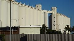 0416 gigantisch viele Getreidesilos - - giant number of crop Silos, Port Pirie (roving_spirits) Tags: australia australien australie southaustralia
