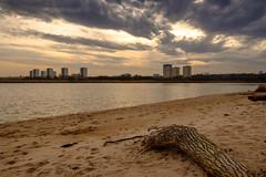Urban Driftwood (John fae Fife) Tags: beach scotland aberdeen rivermouth sand sky towerblocks clouds driftwood river sea