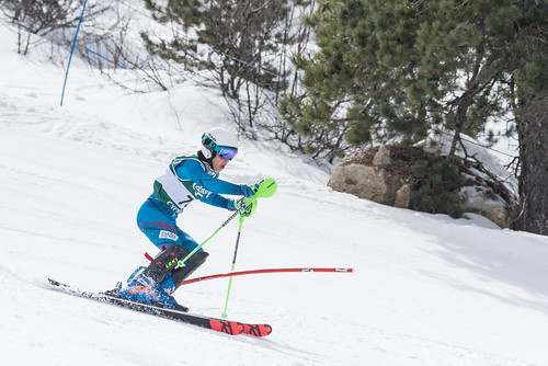 Alpine Races I & II 2019 3_60