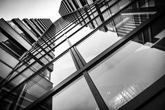 Architektur #Köln #black #white #city# #outside #street #bw (cschubert75) Tags: köln black white city outside street bw