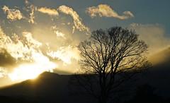 Setting beyond the mountain 7 (@yoshiki) Tags: winter sunset sky cloud mountain landscape japan tree wood