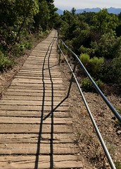 #MtTamalpais #Hike (Σταύρος) Tags: mounttamalpais woodenplanks trail hike hiking marin californië california cali cal californie top mounttampalis mttamalpais sunnyday beautifulday marincounty millvalley mountain kalifornien kalifornia καλιφόρνια カリフォルニア州 캘리포니아 주 northerncalifornia カリフォルニア 加州 калифорния แคลิฟอร์เนีย norcal كاليفورنيا