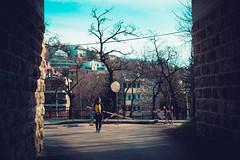KRIS7940 (Chris.Heart) Tags: erdő buda budapest túra természet forest nature hiking